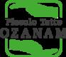 Logo Piccolo Tetto Ozanam