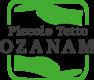 tetto-ozanam-logo_250